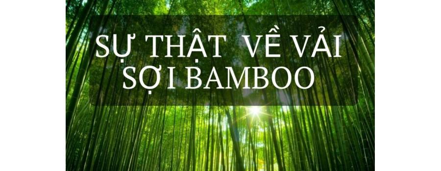 Vải Bamboo Là Gì? Ứng Dụng Của Vải Bamboo Trong Đời Sống